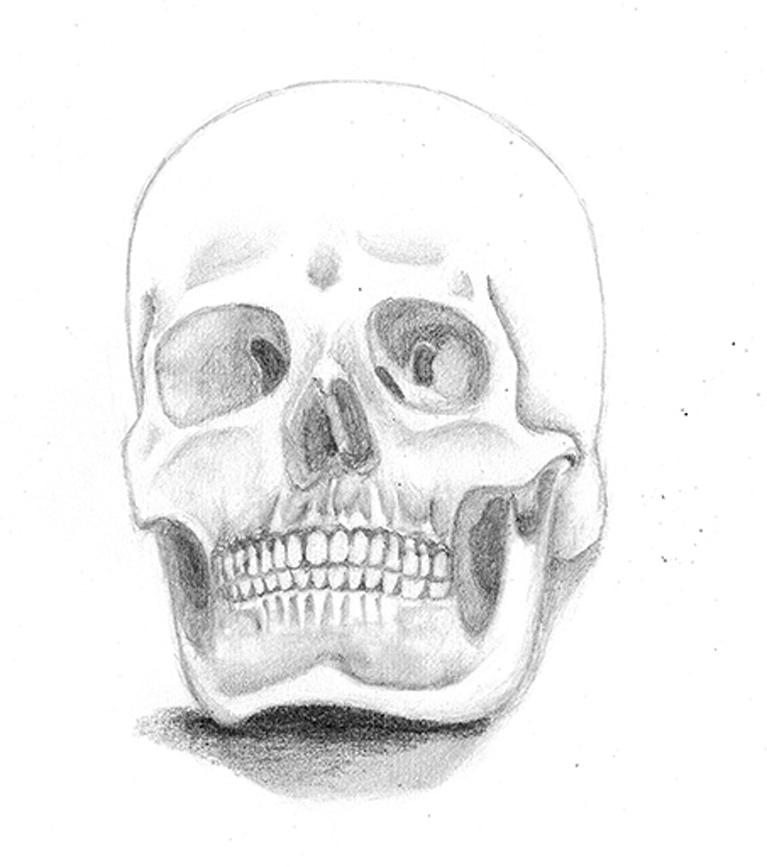Anatomia humana archivos - Cursos de Aerografía, Dibujo, Cómic e ...